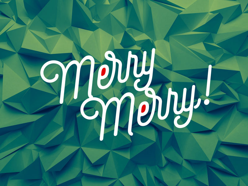 merry merry, 2014 Magnetic Ideas Holiday card