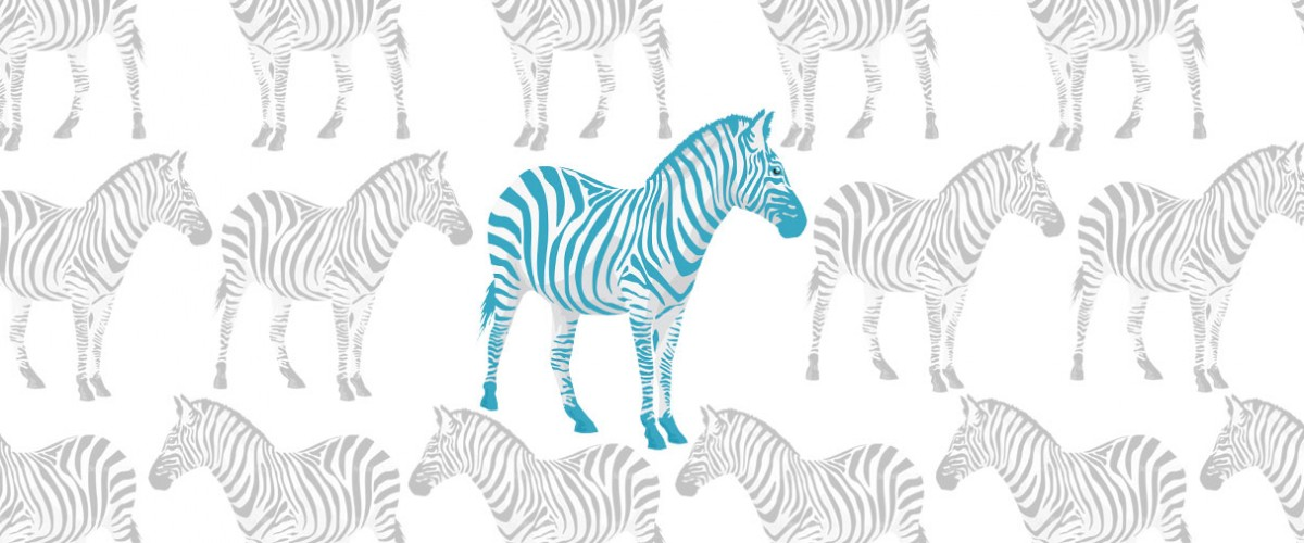 be Amazing-zebra, Maya Angela Quote